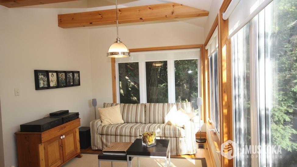 Sun Filled Living Room